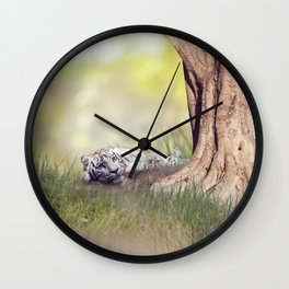 White tiger resting under a big tree Wall Clock