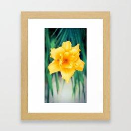 Summer Time Flower Framed Art Print