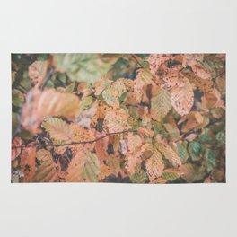 Autumn ground Rug