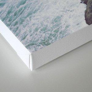 Blue Ocean - Seals on Rocks Canvas Print