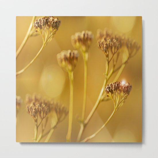 Autumn wildflowers in forest Metal Print