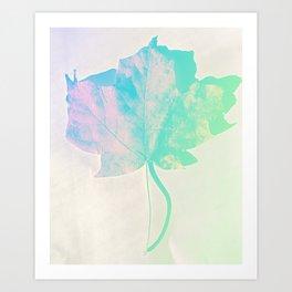 Fall Colors 1 Art Print