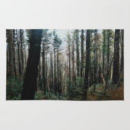 High forest Rug