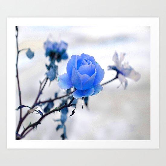 Blue Rose Simplicity Art Print