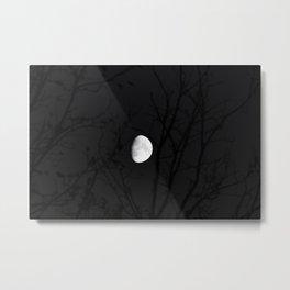 Mother Moon Metal Print