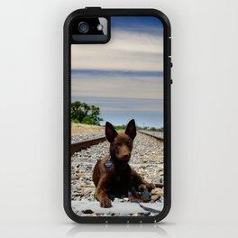 Australian Kelpie on the tracks iPhone Case
