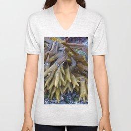 Seaweed bladders -  Bladder wrack  Unisex V-Neck