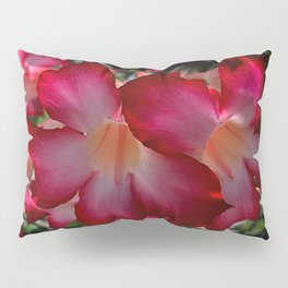 Impala Lily close up Pillow Sham