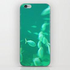 Ocean Soul iPhone & iPod Skin