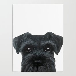 New Black Schnauzer, Dog illustration original painting print Poster