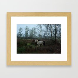Horses in the Fog Framed Art Print