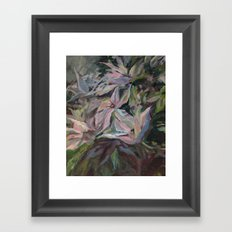 clematis Framed Art Print