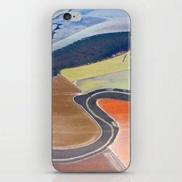 South Bay Swirling iPhone Skin