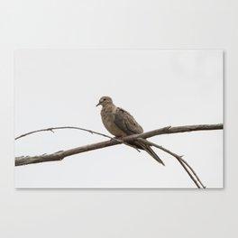 Lonesome Dove Canvas Print