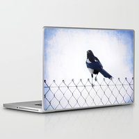 pie Laptop & iPad Skins featuring Pie by Clémence Aresu
