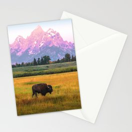 Grand Tetons Bison Stationery Cards