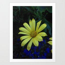 Flowers Pt. 2 Art Print