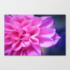 tendre Canvas Print
