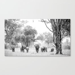 Luangwa Family Canvas Print