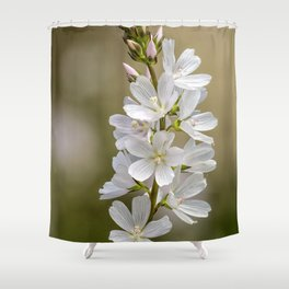 Wild Hyacinth in White and Pink Shower Curtain
