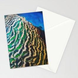 Reubin's Pallette - Peacock Design Stationery Cards