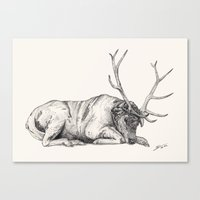 stag Canvas Prints featuring Stag // Graphite by Sandra Dieckmann