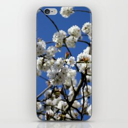 cherry tree iPhone Skin