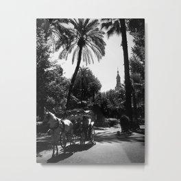 Sevilla Park | Black and White Metal Print