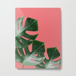 Natural plants XII Metal Print