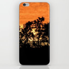 sunset // iowa iPhone Skin