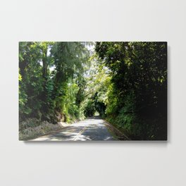 NATURE'S TUNNEL Metal Print