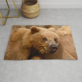 Brown Bear Grizzly Rug