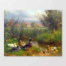 Carl Jutz Ducks Canvas Print