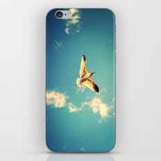 Soaring iPhone & iPod Skin