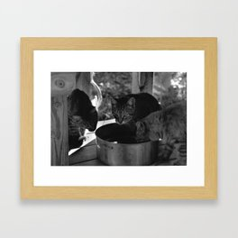 Watering Framed Art Print