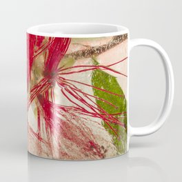 Weeping Bottlebrush Tree #45 Coffee Mug