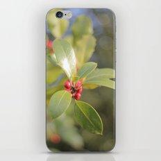 Autumn Day 2 iPhone & iPod Skin