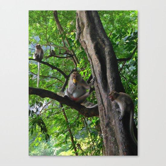 Mountain Monkeys Canvas Print