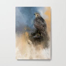 Red Tail In Winter Metal Print