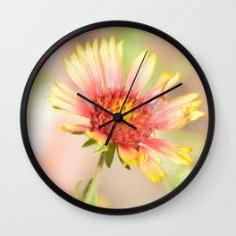 Perfect (blanket flower) Wall Clock