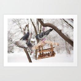 pigeons sitting on bird feeder Art Print