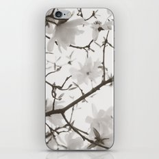Magnolia Branches iPhone & iPod Skin