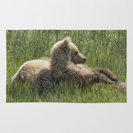 Settling Down Again - Bear Cubs, No. 6 Rug