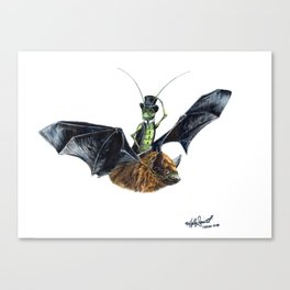 Rider in the Night.  Fantasy watercolor of a bat in the night with a cricket as his rider. Animal Canvas Print