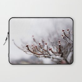 Icy Branches #2 Laptop Sleeve
