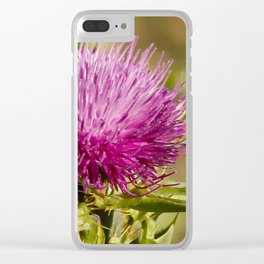 Single Thistle in Monterey, California Clear iPhone Case