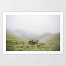 mt tam in the fog Art Print
