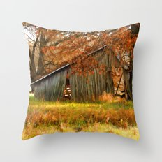 Country autumn colors Throw Pillow
