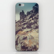 Ocean Beach Rocks in Oregon - Petrified Wood Stone iPhone & iPod Skin