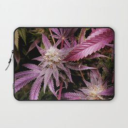 Magenta Laptop Sleeve
